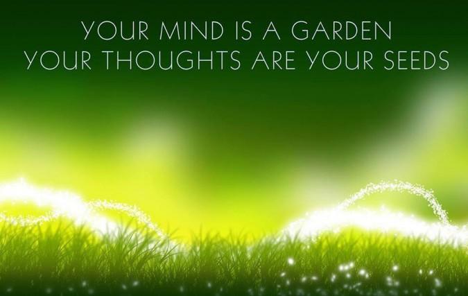 mindfulness garden seeds