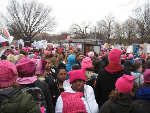 womens march on washignton pink hats