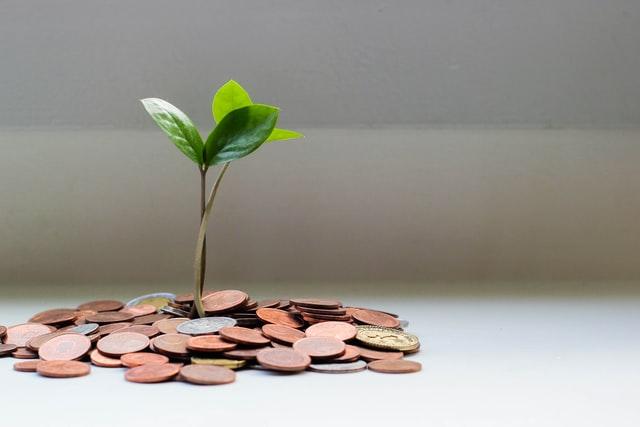 finances, savings, budgeting, capital for small businesses,